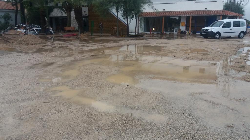 Estat inicial - Problema principal de bassals al Càmping-Resort Gavina de Creixell